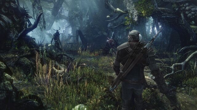 File:The-witcher-3-no7.jpg