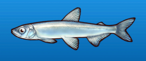 File:Smelt.png