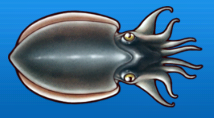 File:Cuttlefish.png
