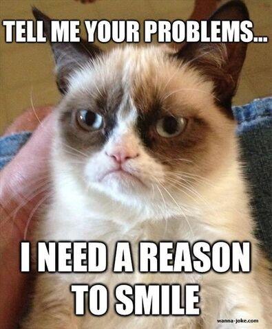 File:Grumpy-cat-05690.jpg