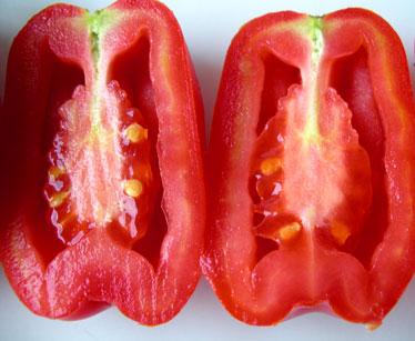 File:Tomato Hollow Fruit.jpg