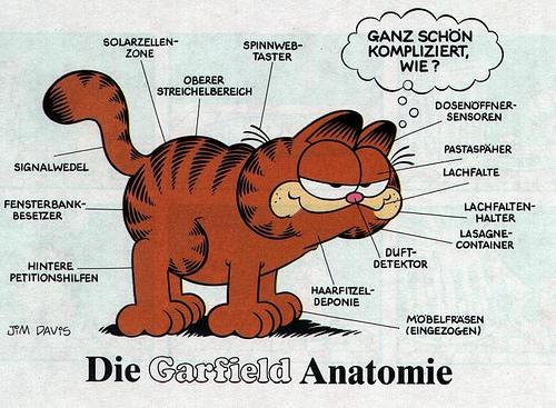 File:Garfields anatomy German.jpg