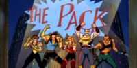 """""""The Pack"""""""