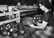 Woman Packaging M5-11-7 Assault Gas Masks