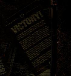 File:VICTORY.jpg