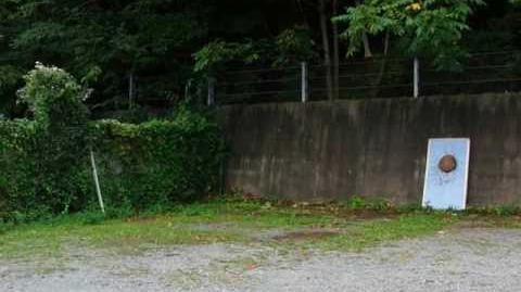"Shuriken-Jutsu ""Many Best-Skills and Basic Skills of Mumyou-ryu No-spin throwing"" ( 2012 from 2010 )"