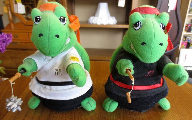 File:Kung fu turtle.jpg