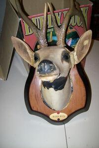 Gemmy 2000 BUDDY BUCK singing deer 2