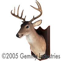 Buck the Animated Trophy