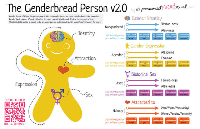 File:Genderbread-2.1 from itspronouncedmetrosexualdotcom.jpg