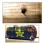 TR Assissination Bullet Damage
