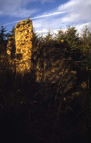 Nafferton castle durham