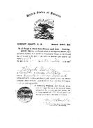 Norton-Patrick 1888 naturalization Boston