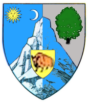Actual Bacau county CoA