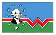 Washington county flag