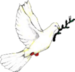 Wikipedia-es-Peace dove