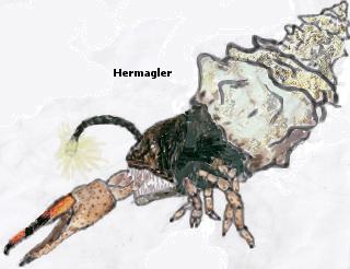 File:Hermagler.jpg