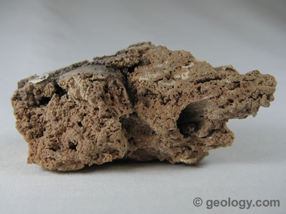 File:Calcite-tufa-88.jpg