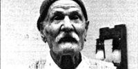 Domenico Minervino (original article)