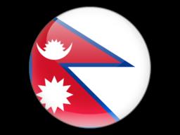 File:NPL Flag.png