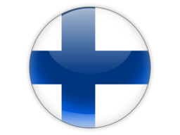 File:FIN Flag.png