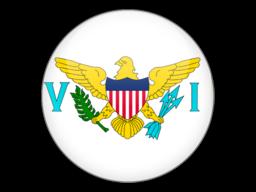 File:VIR Flag.png