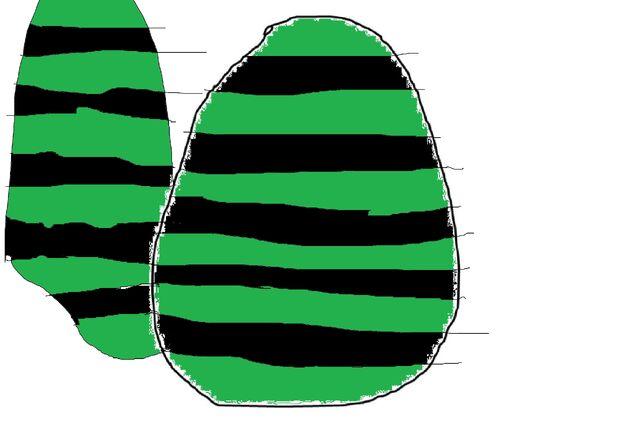 File:Lifty's egg.jpg