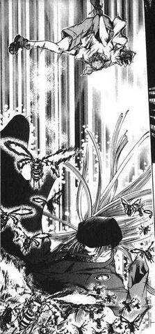 File:Dokubachi vs Ginji.JPG