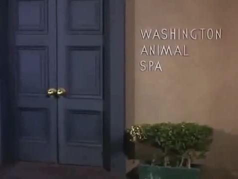 File:Washington-animal-spa.JPG