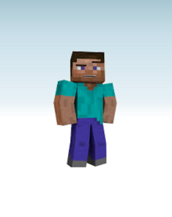 Steve