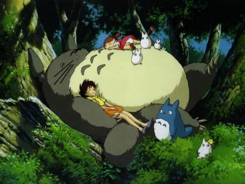 Totoro (Charakter)   Ghibli Wiki   FANDOM powered by Wikia