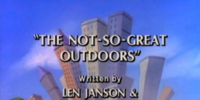 The Not-So-Great Outdoors