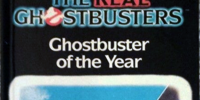The Real Ghostbusters Cartoon to Book