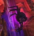 SpiderWitchinGBTVGSVsc09