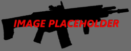 Weapon image placeholder