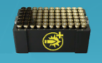 Magnum Ammo