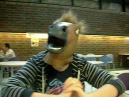 File:Horsey..jpg