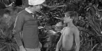 Gilligan Meets Jungle Boy