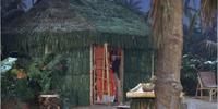 Howell's Hut