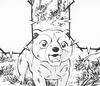 Mitsuo3