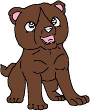 Rajan puppy