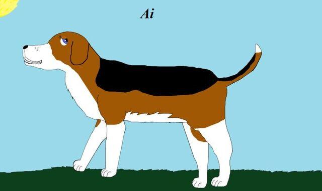 File:Sydney the beagle.jpg
