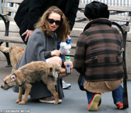 Copy of yamabuki and pups lineart 2 by linesbasestemplates-d3l00qd