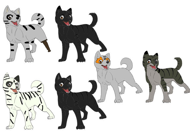 File:Hakuro and kurotora s pups by superbart12345-d4vwwwp.jpg