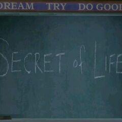 Secret of Life (<a href=