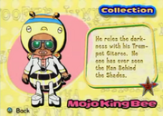 Mojo King Bee Collection