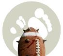 GITP Blood Bowl League Wiki