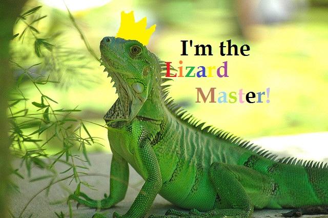 File:Lizard master.jpg