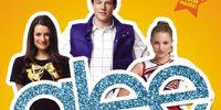 Glee: The Beginning (Novel)
