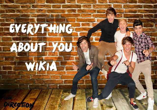 File:Everything About You Wikia Laurakeee By YourReasonToBe2.jpg